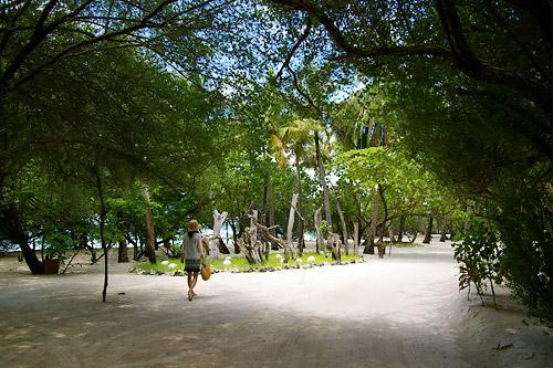 タージエキゾティカ風景